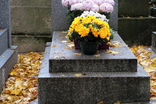 Photo Chrysanthèmes jaunes sur une tombe en pierre grise