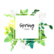 Floral Spring Design With White And Yellow Flowers, Green Leaves, Eucaliptus And Succulents. Geometric Square Frame With Space For Text, Vector Illustration.