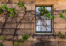 Window In Stone Wall