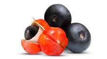 Acai And Guarana Fruit