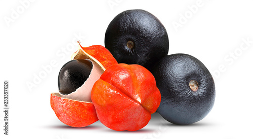 Photo Acai and Guarana Fruit