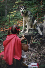 Little Red Riding Hood With A ...