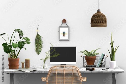 фотография  botanical studio - boho - urban jungle