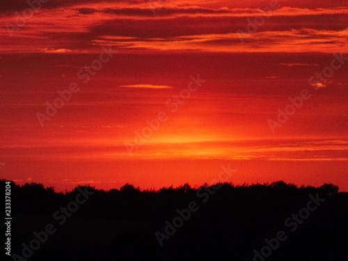 Foto auf AluDibond Rot Red Sky at Night