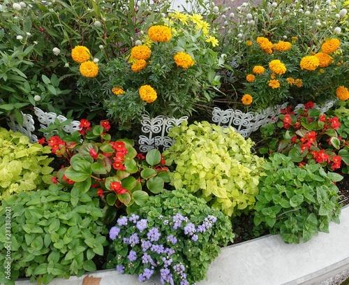 Slika na platnu 秋の花壇
