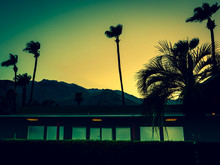 Mountains, Palm Trees And Mote...