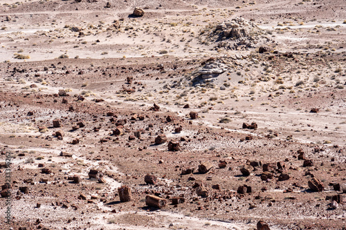 Fotografie, Obraz  View of the vast arid dry desert of Petrified Forest National Park and the Painted Desert of Arizona in Four Corners area