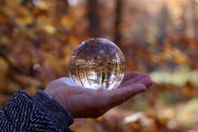 Autumn Through A Glass Ball. Autumn Compositions With Glass Bowl.