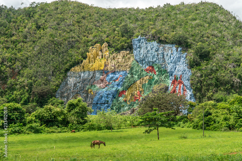 Foto op Aluminium Khaki Amazing Viniales Valley in Cuba