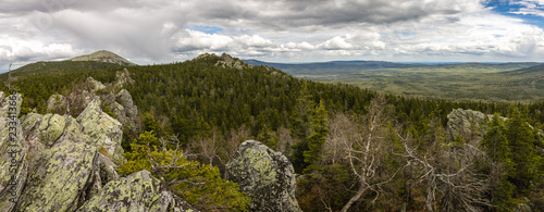 Foto op Aluminium Wit Forest Landscape With A Mountain. Coniferous Trees. Panorama. National Park