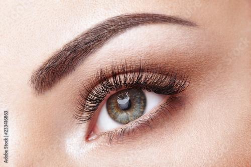 2dfb58f6862 Female Eye with Extreme Long False Eyelashes. Eyelash Extensions. Makeup,  Cosmetics, Beauty