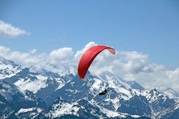 Fototapeta Paragliding im Berner-Oberland, Schweiz