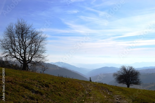 Staande foto Blauwe hemel landscape of the hills and mountains in autumn