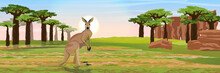 Large Red Kangaroos On The Australian Plains. Dry Grass, Rocks, Acacia Trees And Baobab Grove. Wild Nature Of Australia. Realistic Vector Landscape.