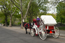 Horse Drawn Carriage In Central Park, Manhattan, New York City, New York State, USA