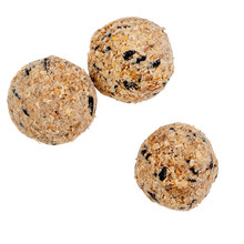 Fat Balls For Feeding Wild Garden Birds, Suet, No Nets, Isolated On White Background.