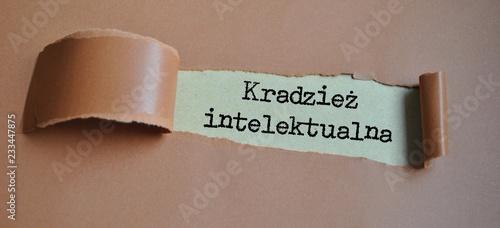 Obraz Kradzież intelektualna - fototapety do salonu