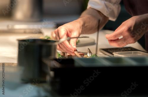 Photo  Restaurant chef preparing a plate under a warm light