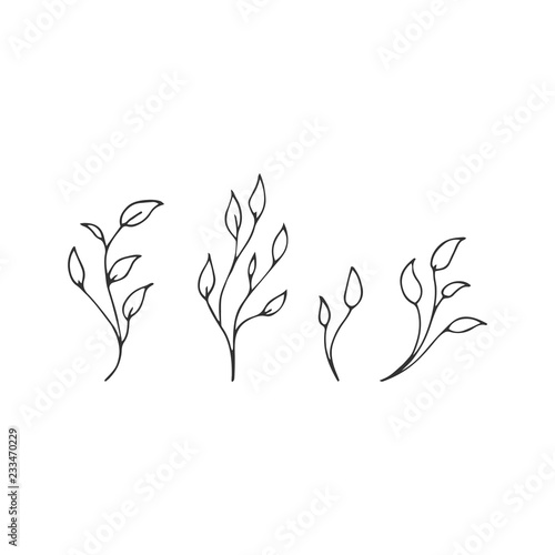 Fototapety, obrazy: Hand drawn floral object