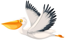 A Pelican Character On White B...
