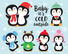 Cute Baby Penguins In Winter O...