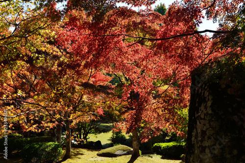 Poster Jardin 渓石園の紅葉