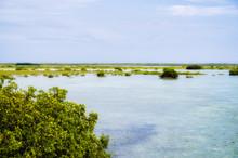 Along The Floria Keys