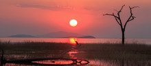 Landscape Of The Sun Setting Over Lake Kariba With An African Grey Heron Perched Directly Beneath The Rays Of The Setting Sun.  The Perfect Ending To A Beautiful Day.  Lake Kariba, Zimbabwe
