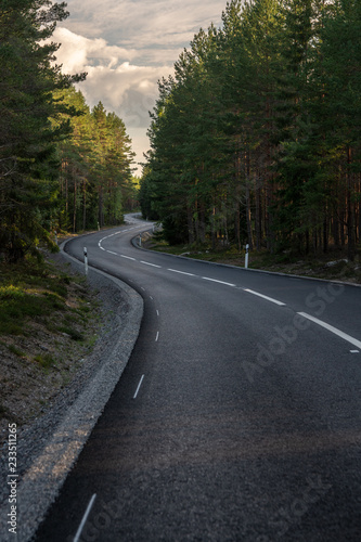 Foto  Curved tarmac road passing trough a pine forest in Sweden