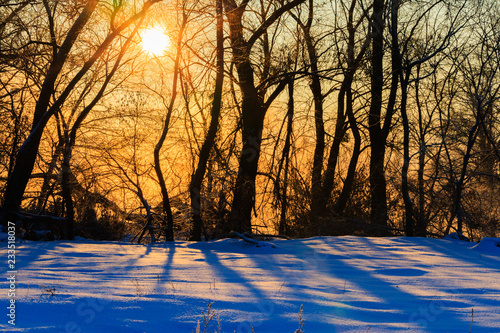 warm rays of the sun shining in the winter frosty morning Canvas Print
