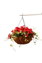Hanging Basket Of Beautiful Fl...