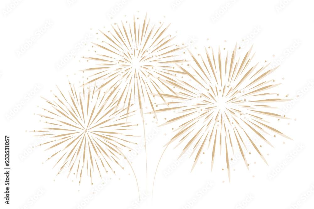 Fototapeta firework isolated on white background vector illustration EPS10