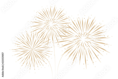 Canvas Print firework isolated on white background vector illustration EPS10