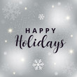 Happy holidays text on silver blurred background.