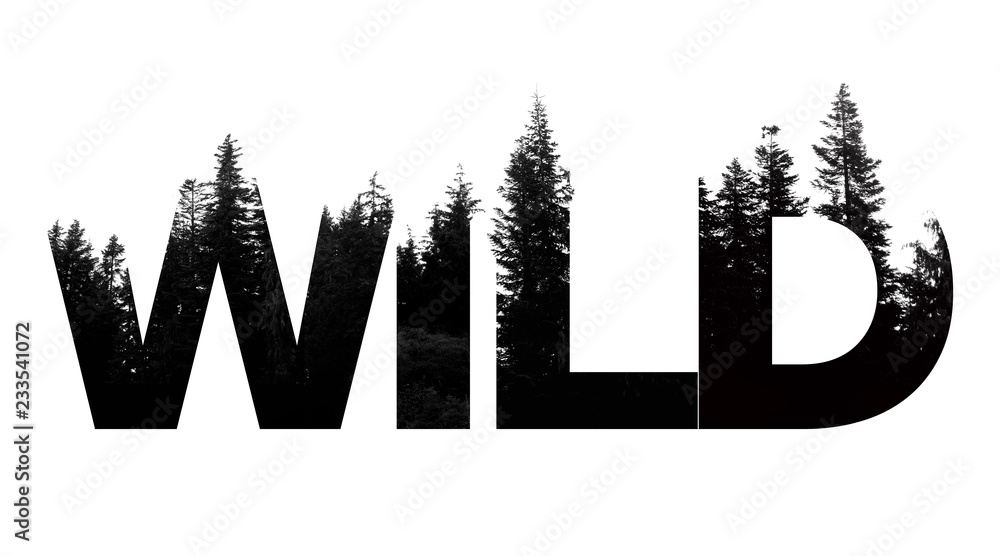 Fototapety, obrazy: Wild word made from outdoor wilderness treetop lettering