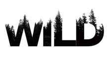 Wild Word Made From Outdoor Wilderness Treetop Lettering