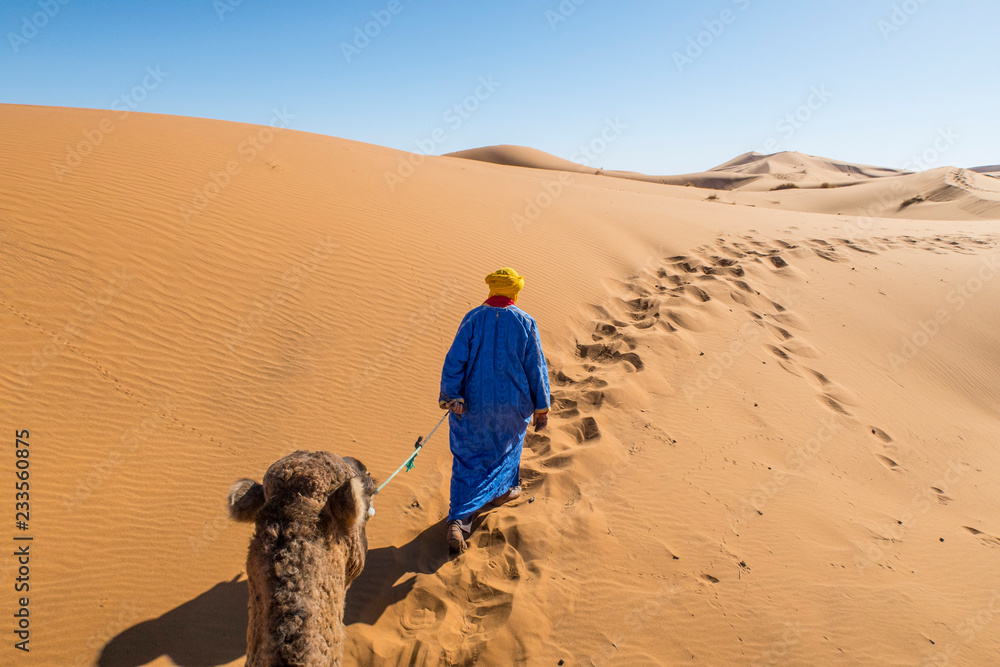 Berber nomad with a camel in Sahara desert, Morocco