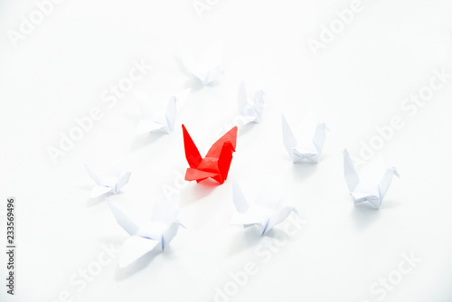 Photo  Close up red bird flying different through a group of white bird,Leadership concept