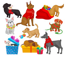 Set Of Dogs With Christmas Obj...