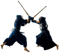 Two Kendo Martial Arts Fighter...