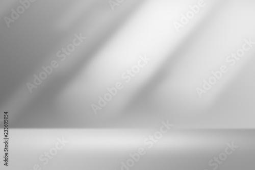 Product showcase spotlight background. Clean photographer studio. Wallpaper Mural