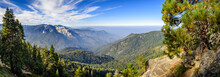 Landscape In Sequoia National ...