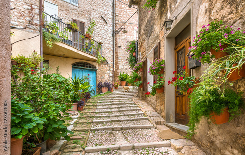 Garden Poster Narrow alley Picturesque road in Trevi, ancient village in the Umbria region of Italy.