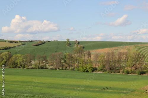 Spring landscape (photo Czech Republic, Europe)