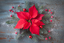 Christmas Flower Poinsettia And Decorated Fir Tree Twigs On Rustic Wooden Background With Snow,