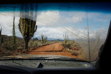 Dirt Road Amidst Cactus Growing On Field Seen Through Wet Car Windshield