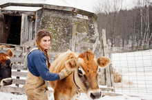 Woman Stroking Cow On Snow Cov...