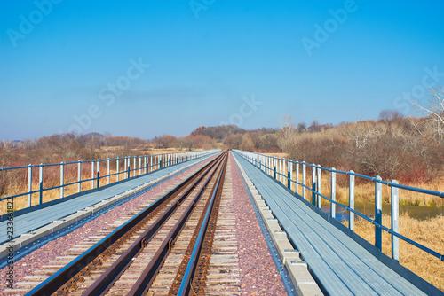 Fotografie, Obraz  Mass Transportation - Rail Lines in Winter