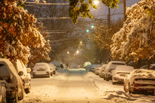 Snow Fall In New York, Snow Th...