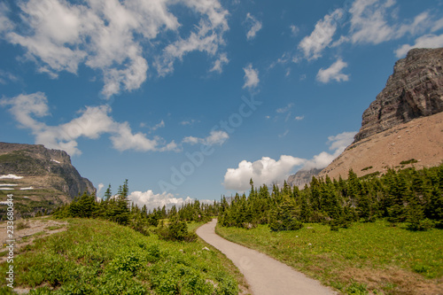 Foto op Canvas Olijf Path to Logan Pass in Glacier National Park in Northern Montana